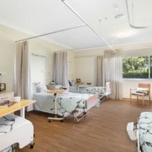 Standard Companion Room