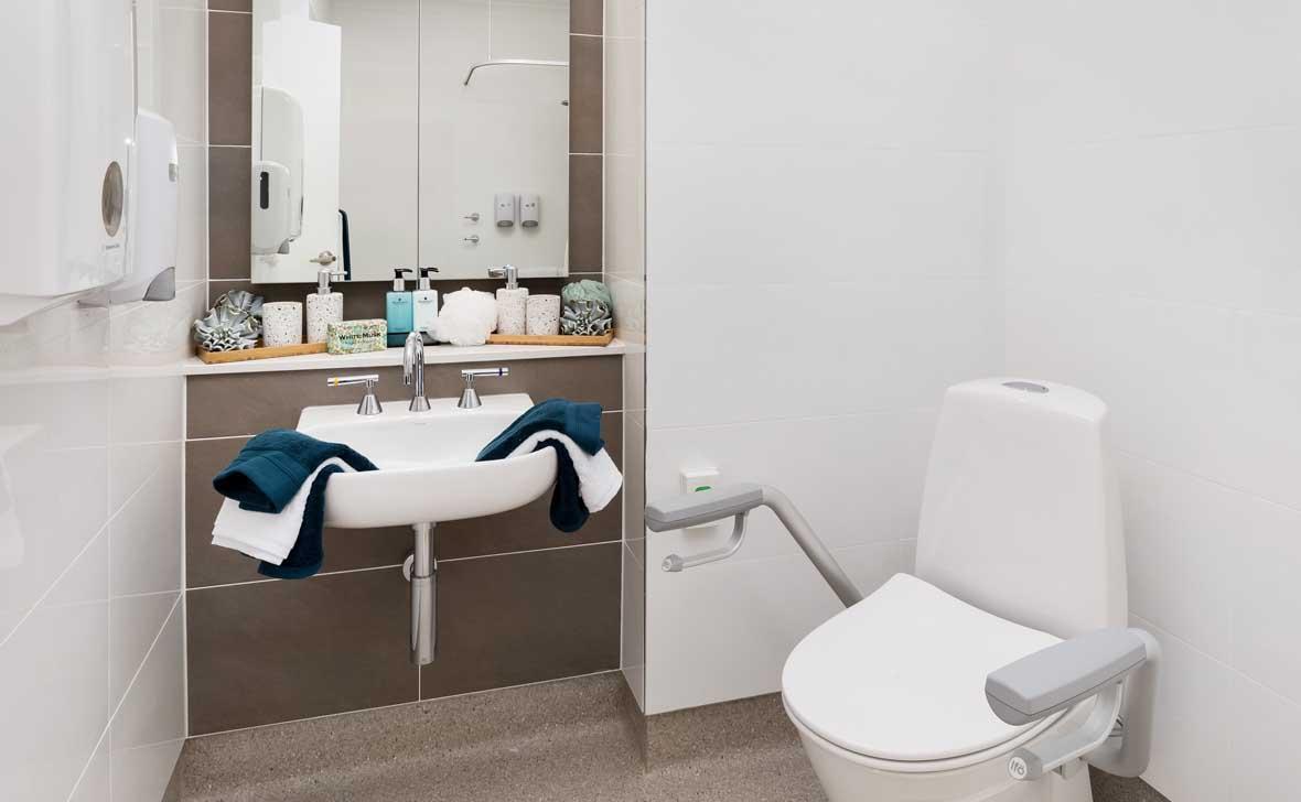 Killarney_Vale_Toilet